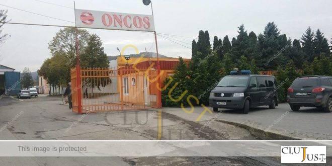 Producătorii de carne de pui Oncos și Amareto, acuzați de evaziune, sunt în insolvență