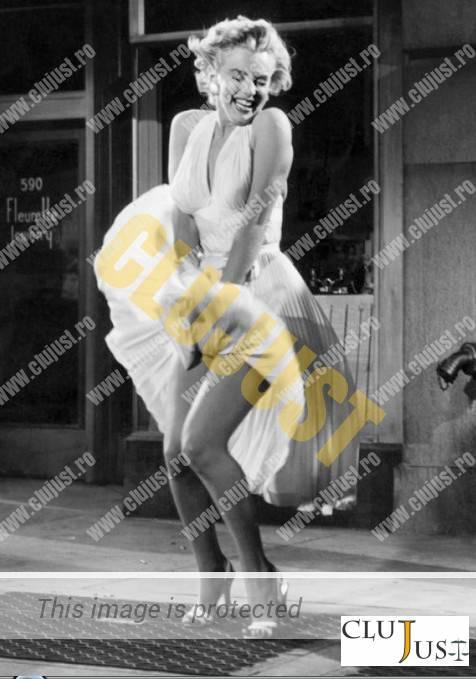 Marylin Monrie (sursa foto arts-stew.com)
