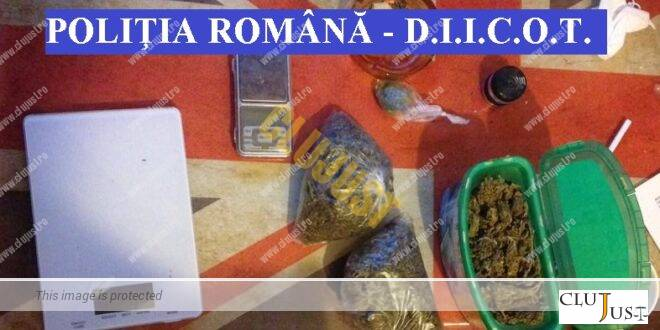 Zeci de percheziții în Cluj-Napoca, Florești, Chinteni și Baciu. Rețea de traficanți de droguri destructurată