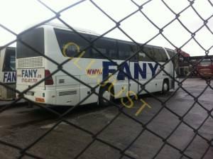 fany 2