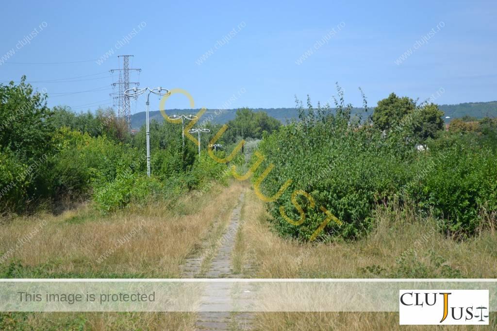 parcul feroviarilor cluj-napoca (27)