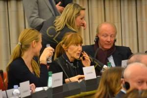 Macovei în comisia LIBE