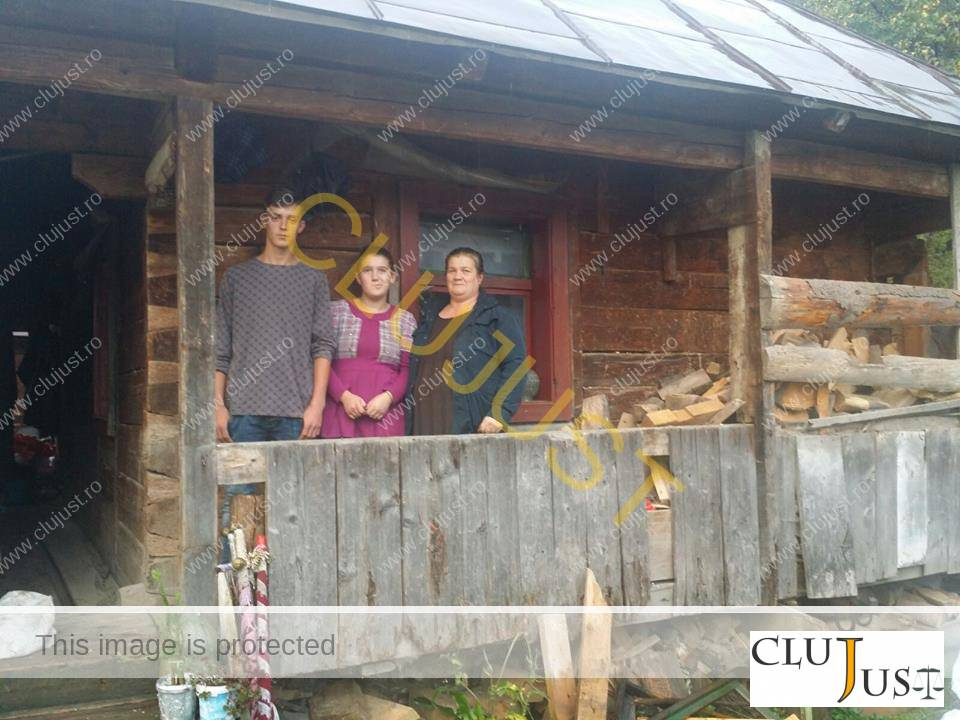 casa familia parasita de tata maramures (6)
