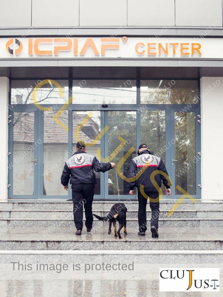 international business security (3)