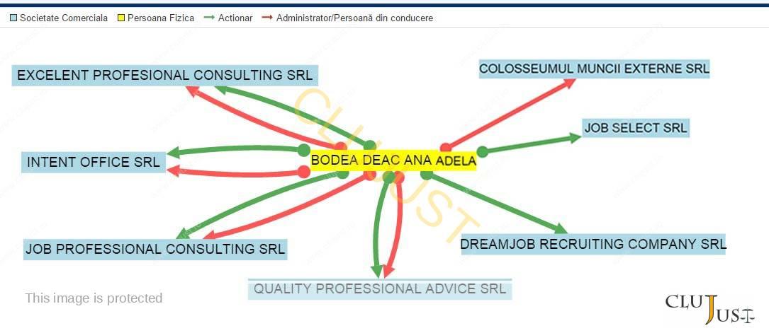 Firmele prin care a acționat Deac