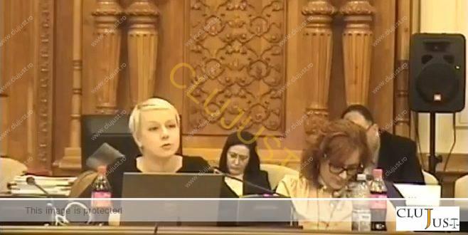Gîrbovan susține prevederea adoptată de Comisie privind răspunderea magistraților