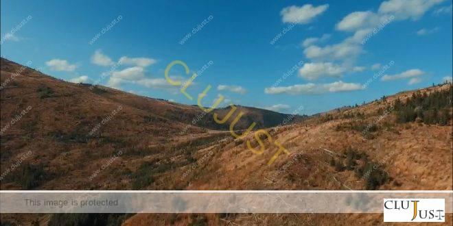Efectul tăierilor ilegale: Deșertificare în munții Maramureșului VIDEO EXCLUSIV