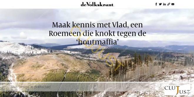 """Presa olandeză relatează despre """"mafia lemnului"""" din Maramureș. Anchetele penale zac în parchetul românesc"""