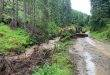 Viituri în Maramureș în zonele unde s-au defrișat ilegal păduri FOTO