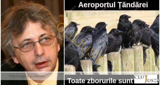 Instanța anulează amenda CNCD pentru meme-ul cu ciori apărut după plecarea muncitorilor în Germania de pe Aeroportul Cluj